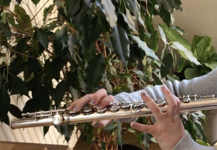 Journal d'une confinée #36 : la musique au soleil