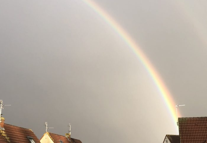 Journal d'une confinée #45 : alerte rouge sur arc-en-ciel